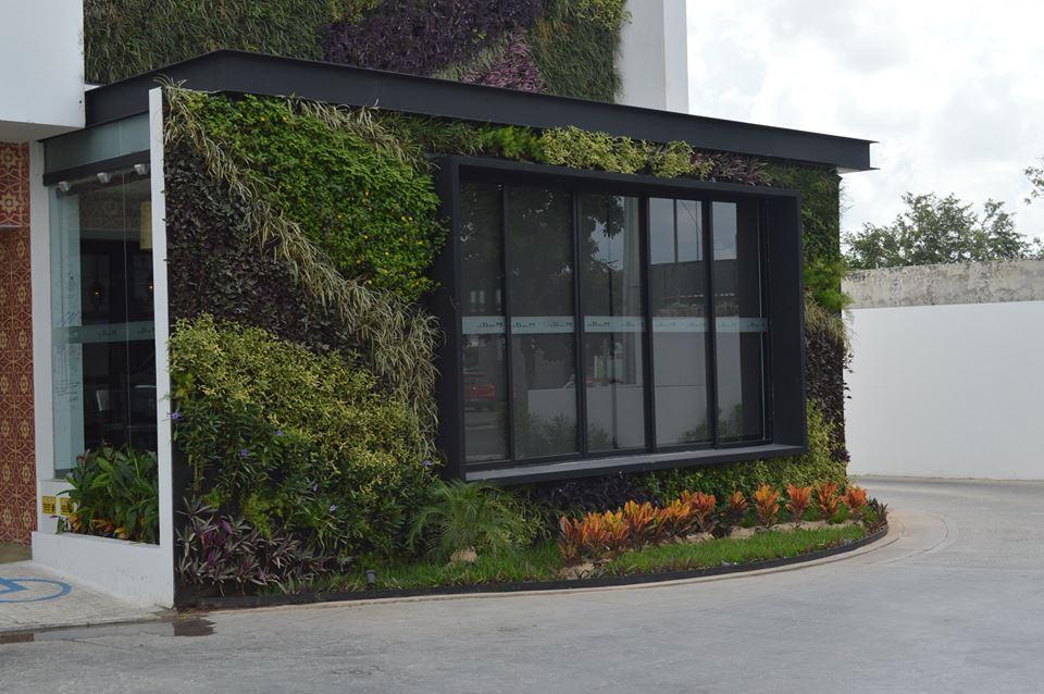 Arturo orozco jardines verticales en m xico df for Jardines verticales mexico