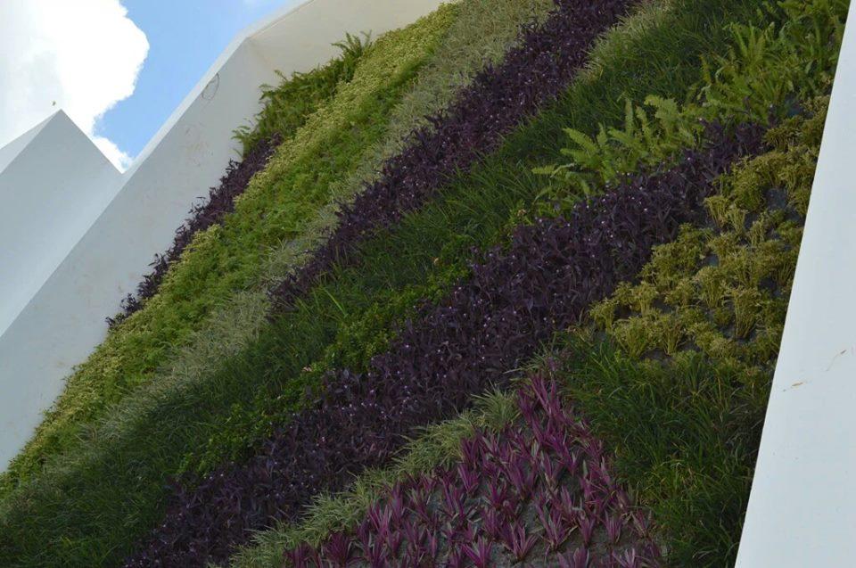 arturo orozco jardines verticales en m xico df