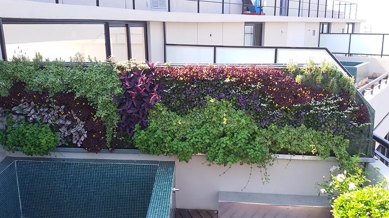 Eduardo barak jardines verticales en argentina buenos aires for Jardines verticales buenos aires