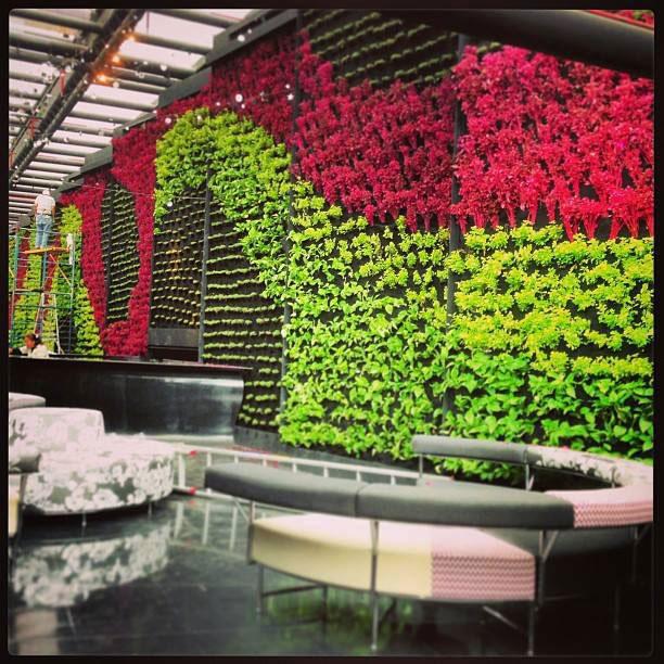 Ricardo martinez larrauri muros verdes en m xico df for Muros verdes verticales