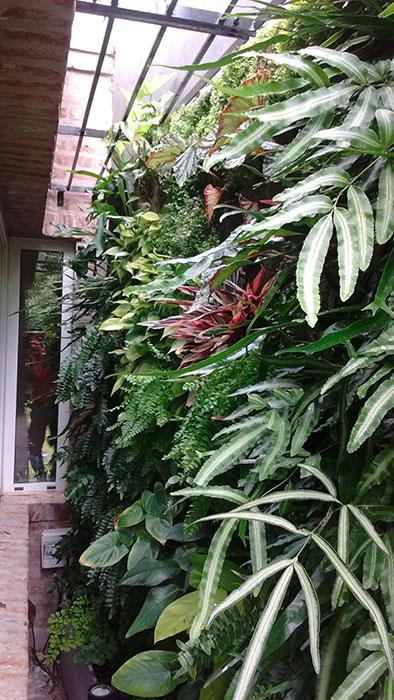 Guillermo penzotti ecosistema vertical en argentina for Jardines verticales buenos aires