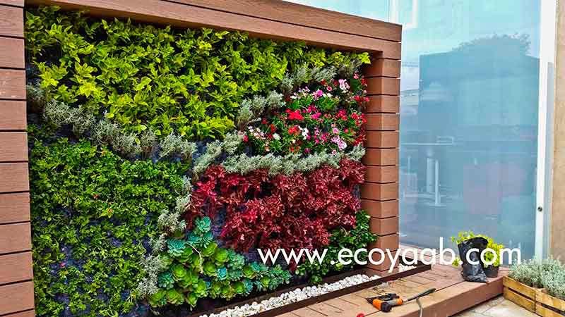 Jardines verticales en m xico ciudad de m xico sylvia llano for Jardines verticales mexico