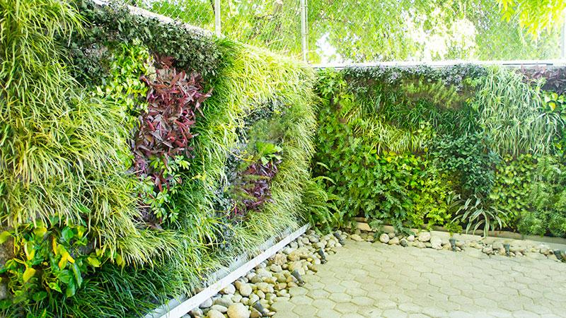 Johan c salazar m s h bitat muros verdes en m xico for Jardines verticales ecuador