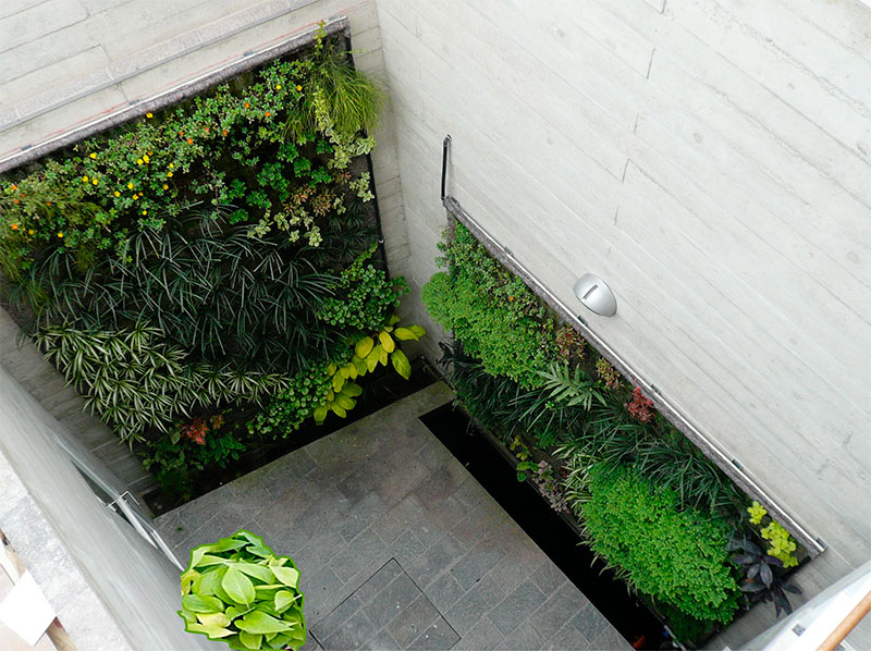 Daniela silva rodriguez muros verdes en per lima for Muros verdes en mexico