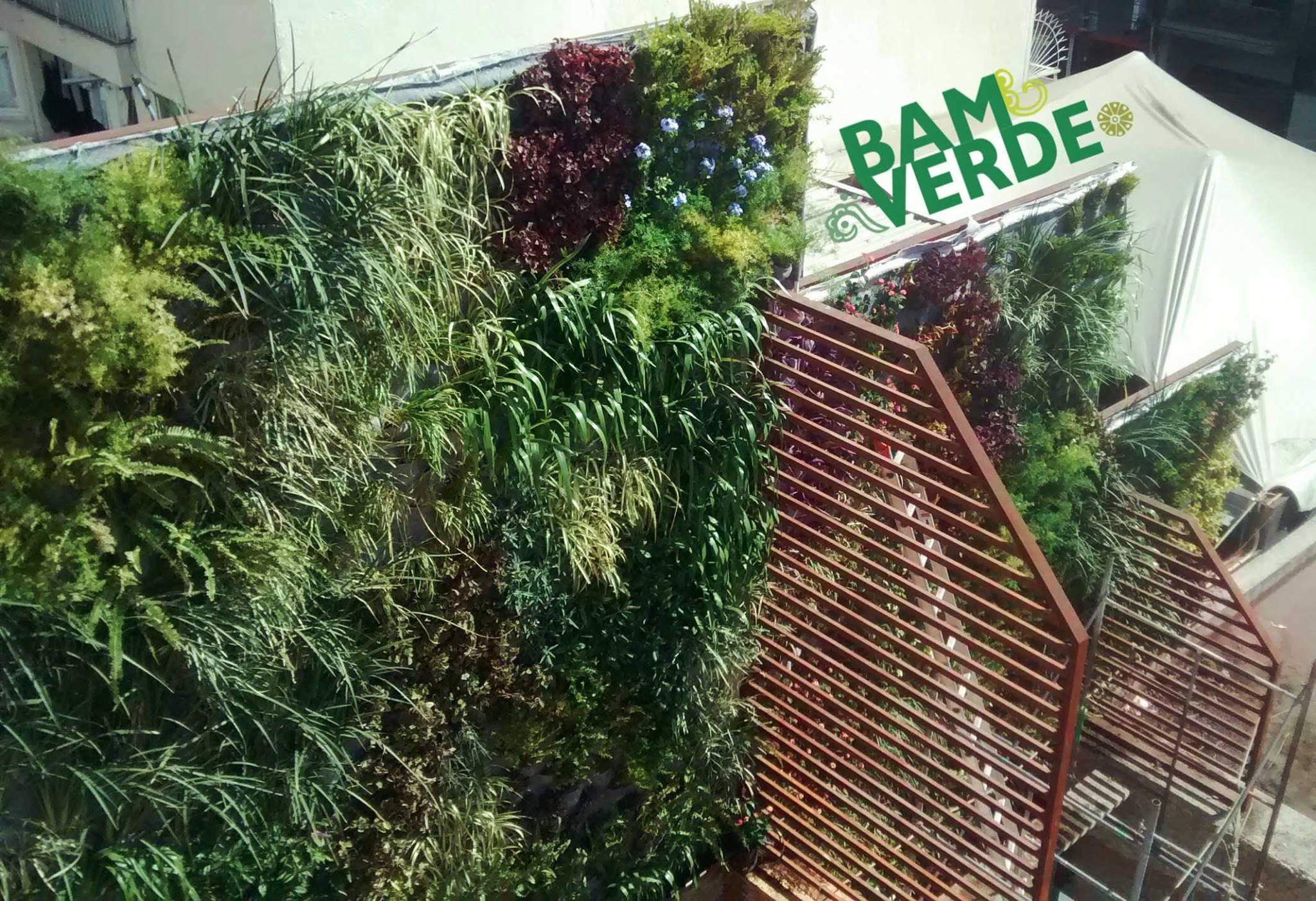Eduardo Huerta Muros Verdes En M Xico Cuernavaca