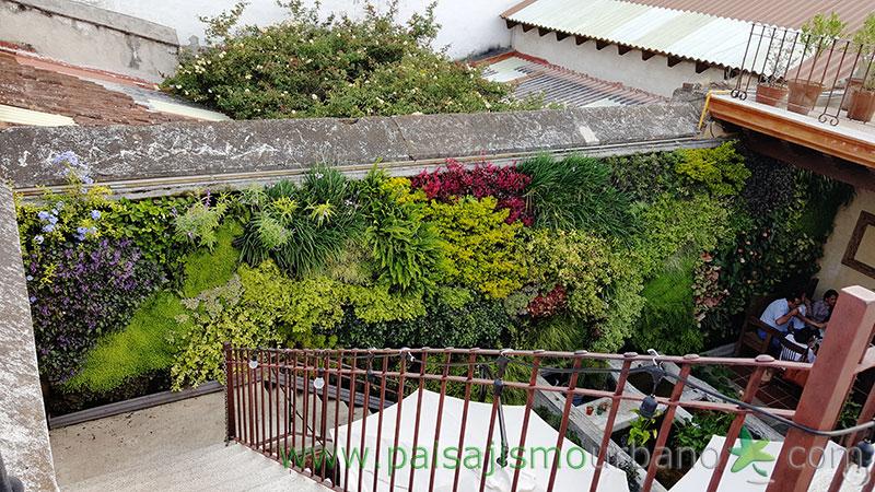 Mario L 243 Pez Y Ariane Stollreiter Jard 237 N Vertical En Guatemala