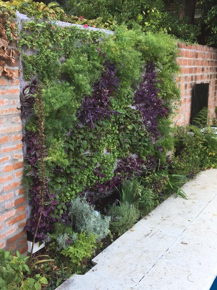 Luis Pasqualini Jardines Verticales En Argentina Buenos
