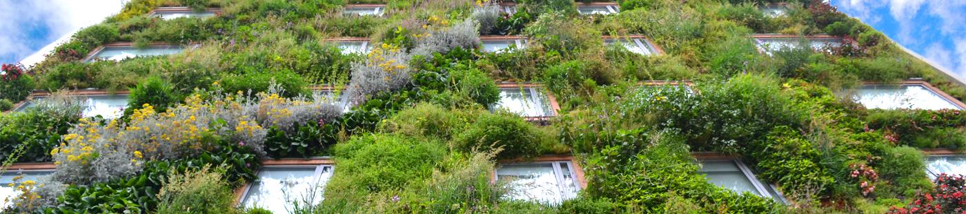 jardin-vertical-curso-fachadas-verticales