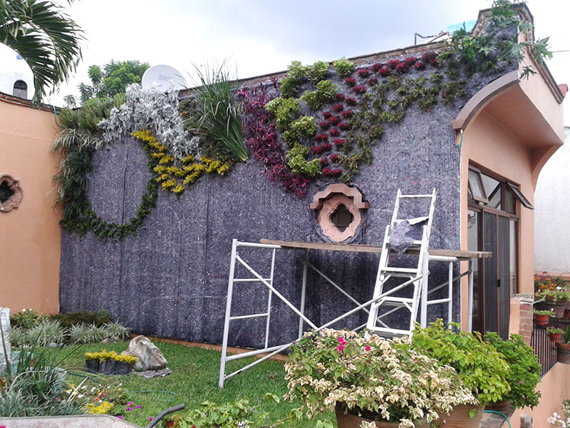 Eduardo huerta muros verdes en m xico cuernavaca for Jardin en muro