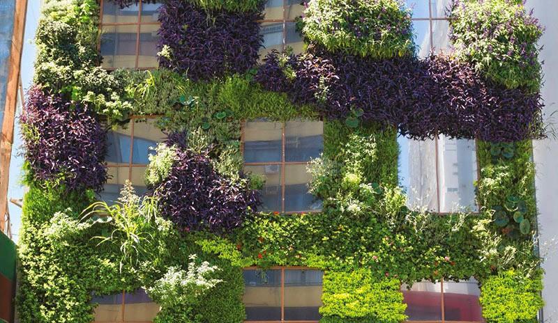 Juli n poggio g wall jardines verticales en argentina for Jardines verticales buenos aires