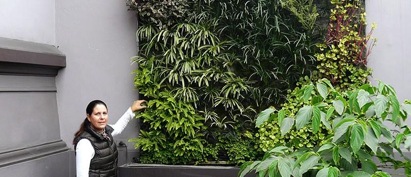 Daniela silva rodriguez muros verdes en per lima for Jardines verticales ecuador