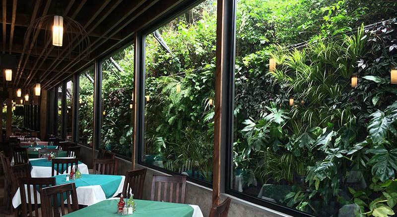 Gabriela rendon jardines verticales en guatemala for Jardines verticales ecuador