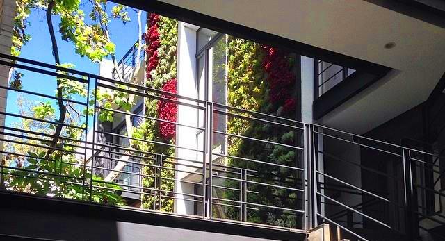 Ricardo martinez larrauri muros verdes en m xico df for Jardines verticales ecuador