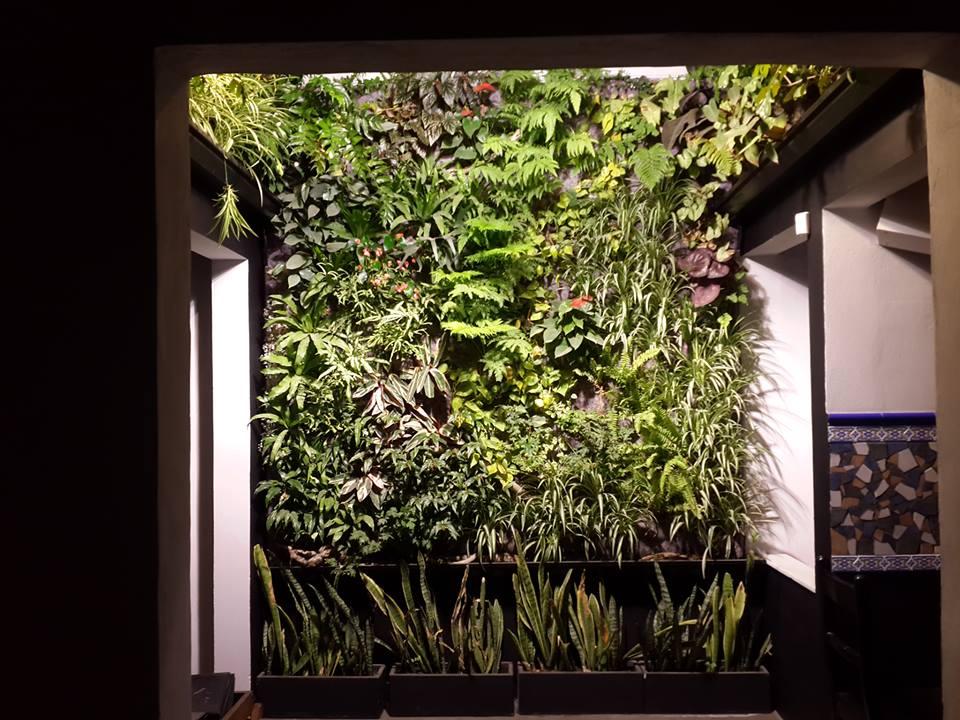 Emmanuel edgar baghin jardines verticales en argentina for Jardines verticales ecuador