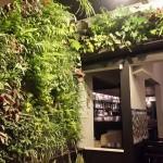 Emmanuel Edgar Baghin, jardines verticales en Argentina