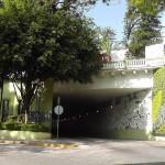 Guillermo Herrera, jardines verticales en Mexico, Xalapa