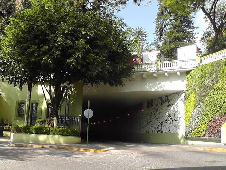 Guillermo herrera jardines verticales en m xico xalapa for Jardines verticales ecuador