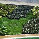 Jardines verticales en Bolivia, Leonardo Teran