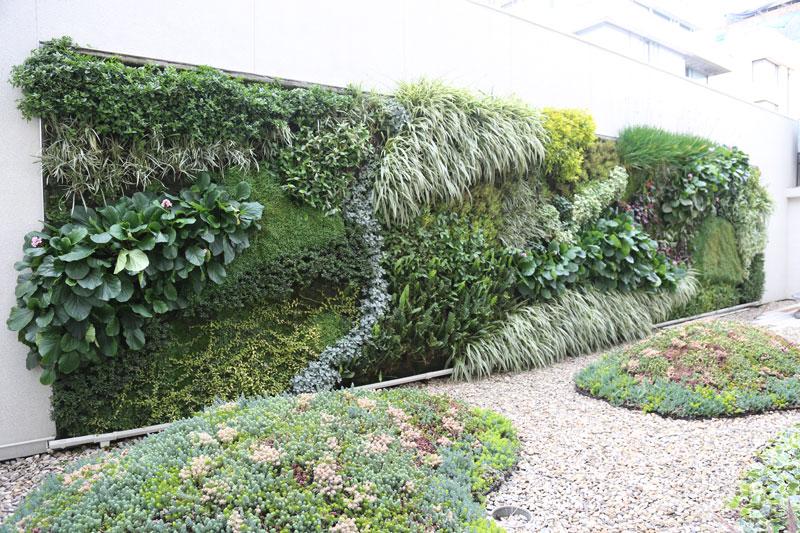 Nicol s borda jardines verticales en colombia bogot for Jardines verticales ecuador