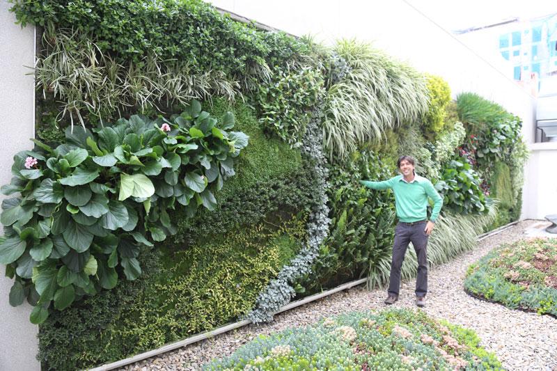 nicol s borda jardines verticales en colombia bogot