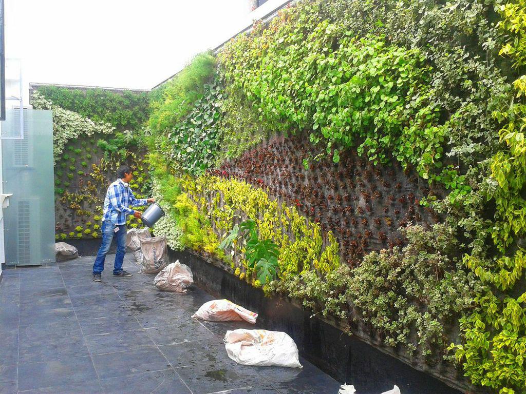 Pablo Atuesta Jardines Verticales En Colombia Bogot