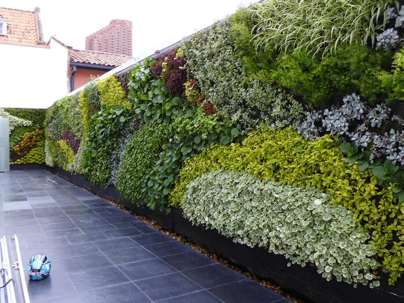 Pablo atuesta jardines verticales en colombia bogot for Jardines verticales ecuador