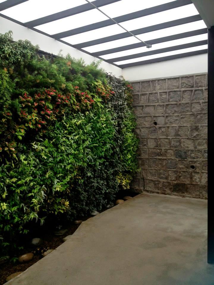 miguel ter n jardines verticales en ecuador quito