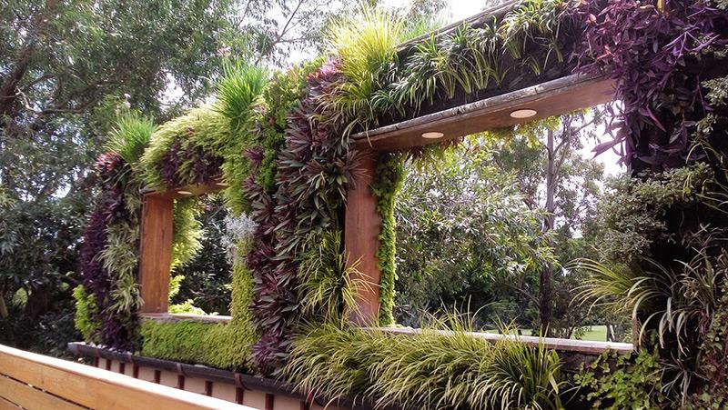 Eleanora daura jardines verticales en el salvador for Jardines verticales ecuador