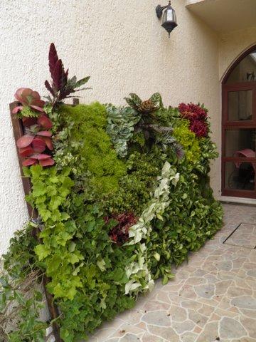 Humberto Olascoaga Jardines Verticales En M Xico Toluco
