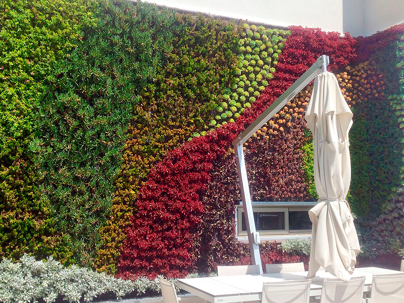 Mariana lozano jardines verticales en m xico puebla for Proyecto de jardines verticales