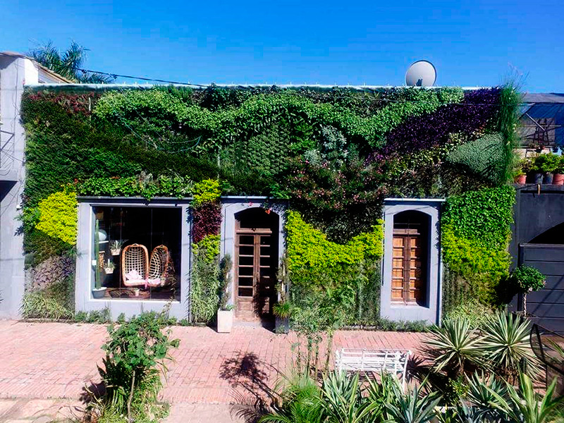 Jardines verticales en Chaco, Argentina - José Javier Osarunak