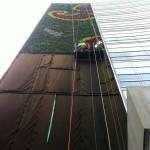 Muros verdes en Mexico, Ricardo Martinez