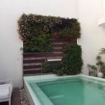 Jardines verticales en Argentina, G-wall