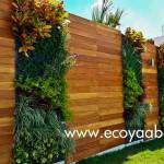 Jardines verticales en Mexico, Sylvia Llano, Ecoyaab
