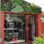 Jardines verticales en Argentina, Ivo Lucian Oxagaray