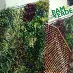 Jardines verticales Bamverde