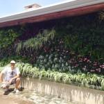 Jardines verticales en Argentina, Luis Pasqualini