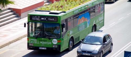 Azoteas verdes en autobuses