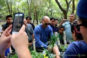 jardin-vertical-curso-muros-verdes-mexico-2015-26