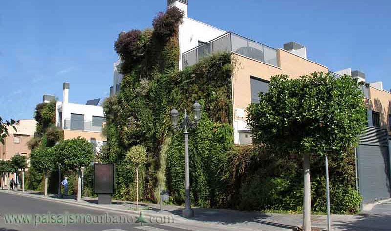 fachada vegetal