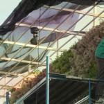 Jardines verticales en Argentina, Nadir Laquis