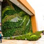 Jardines verticales en Colombia, Nicolas Borda