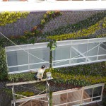 Jardines verticales en Colombia, Pablo Atuesta