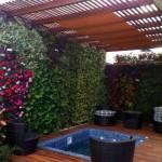 Jardines verticales en Ecuador, Miguel Teran