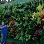 Jardines verticales en Venezuela - Raymond Dacosta