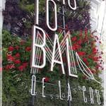 Nadir Laquis, Masdar, jardines verticales en Argentina