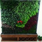 Raymundo Mondragon, jardines verticales México DF