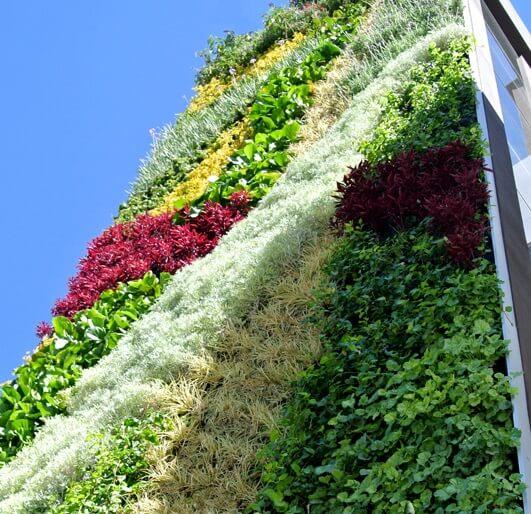 fachadas verdes