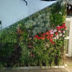 Jardines verticales Guillermo Albors, San Juan, Argentina