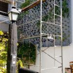 Jardines verticales en Buenos AIres, Argentina - Andrea Guerendiain